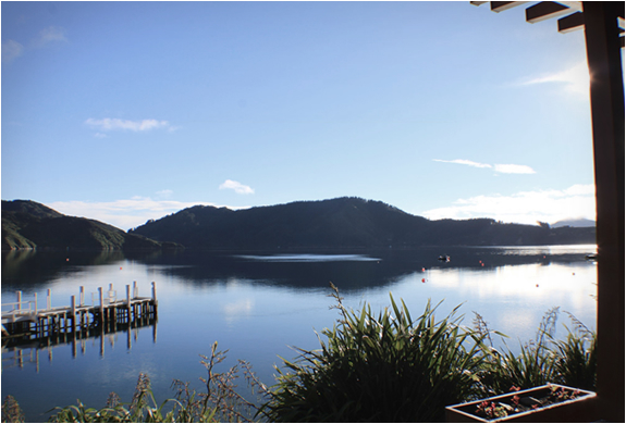 bay-of-many-coves-new-zealand-7.jpg
