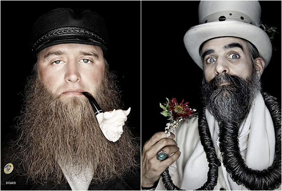 beard-lover-5.jpg | Image