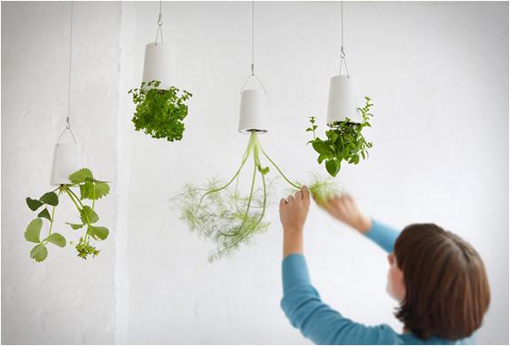 boskke-sky-planter-3.jpg | Image