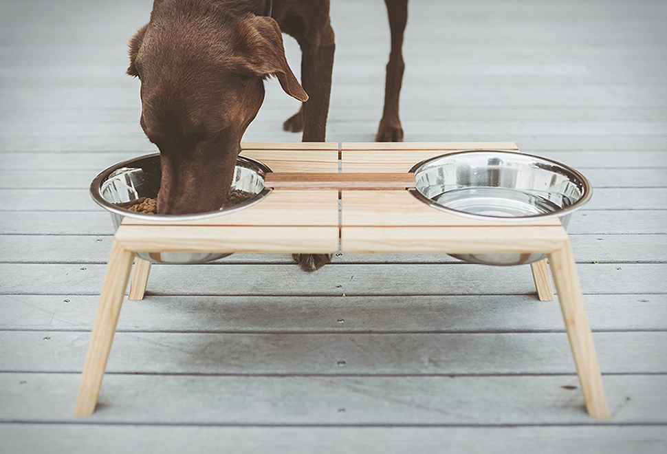 Bottoms Up Pet Dish | Image