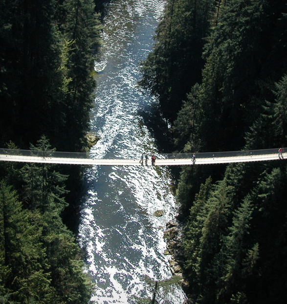 capilano-suspension-bridge-park-10.jpg