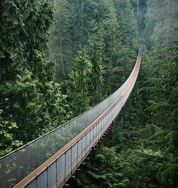 capilano-suspension-bridge-park-2.jpg | Image