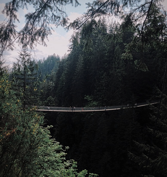 capilano-suspension-bridge-park-5.jpg