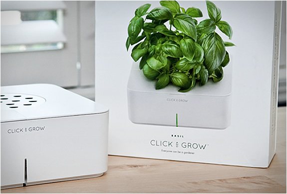 click-and-grow-4.jpg | Image