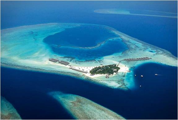 Offerta Maldive CONSTANCE MOOFUSHI RESORT solo soggiorno gennaio ...