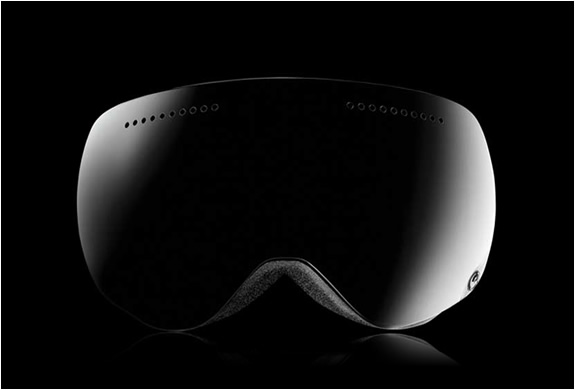 Dragon Apx Polarized 2012 Goggles | Image