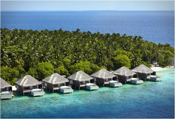 dusit-thani-maldives-4.jpg | Image