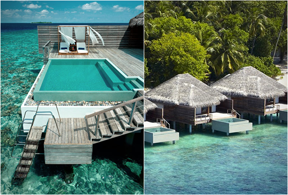 DUSIT THANI RESORT | MALDIVES | Image