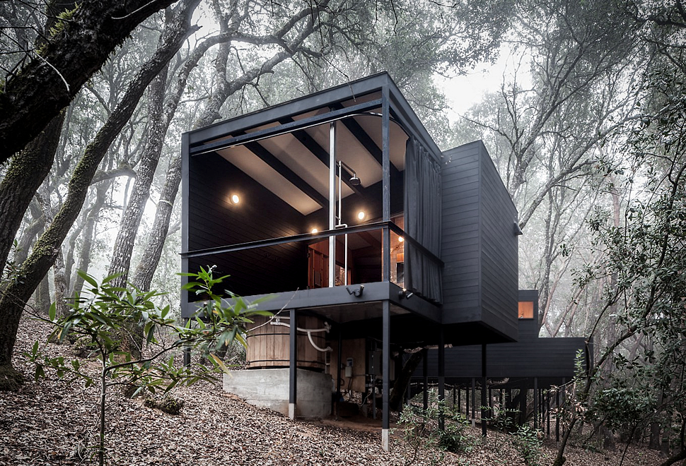 Forest House | Image