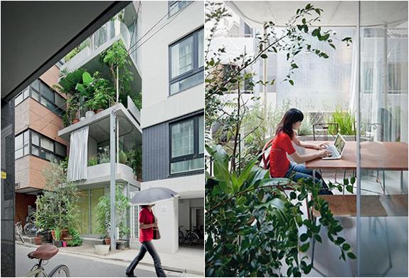 garden-house-tokyo-3.jpg
