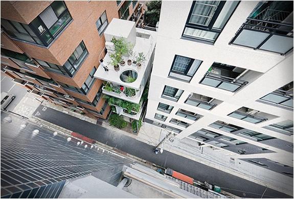 GARDEN HOUSE | TOKYO | Image