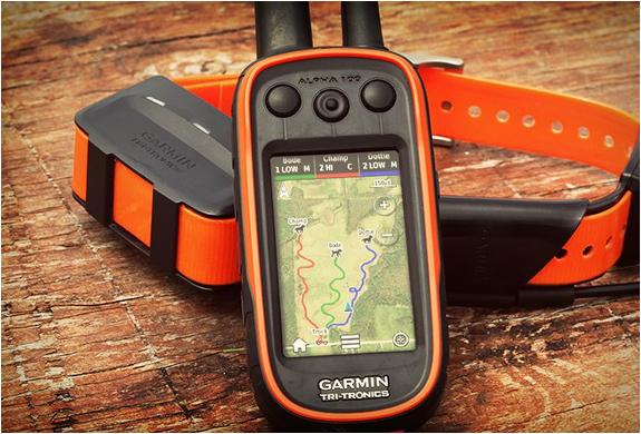 Garmin Tracking System >> GARMIN ASTRO | DOG TRACKING SYSTEM