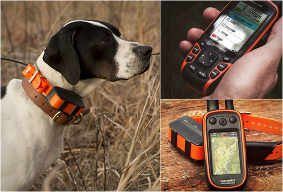 Garmin Astro | Dog Tracking System | Image