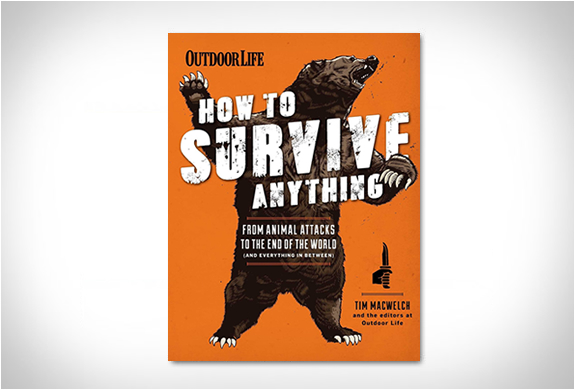 How To Survive Anything | Image