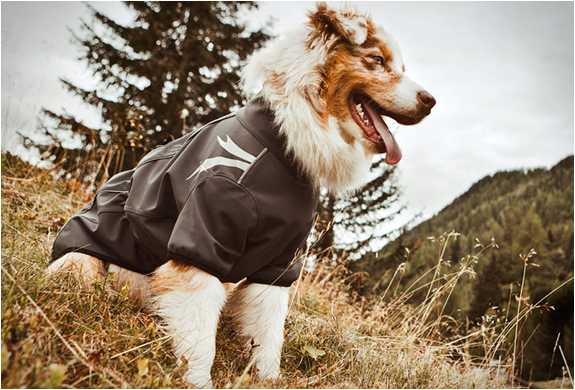 DOG OUTDOOR OVERALLS | BY HURTTA | Image