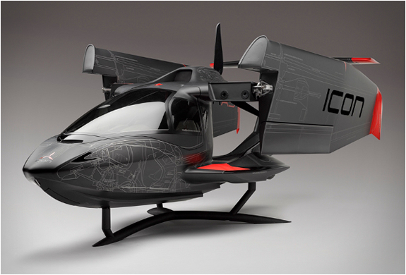 ICON A5 AIRCRAFT | SPECIAL EDITION | Image