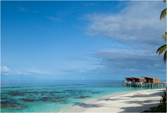 img_alila_maldives_5.jpg