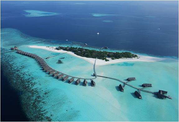 img_cocoa_island_resort_maldives_5.jpg