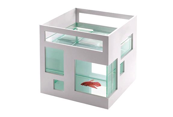 img_condo_fish_bowl.jpg