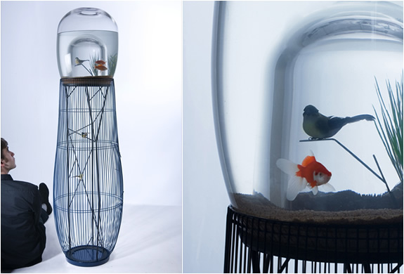 DUPLEX | FISHBOWL AND BIRDCAGE | Image