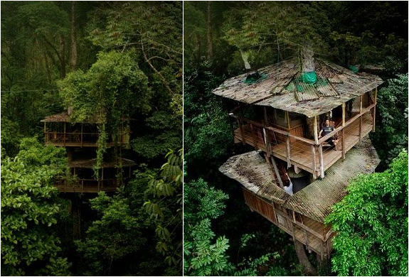 Finca Bellavista | Tree House Community In Costa Rica | Image
