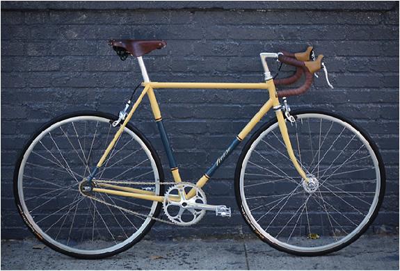 img_horse_cycles_5.jpg