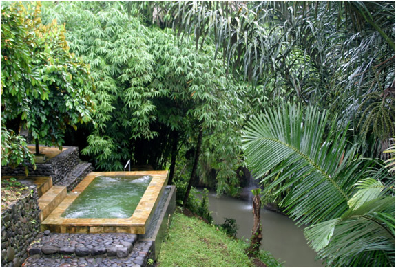 img_panchoran_retreat_bali_4.jpg