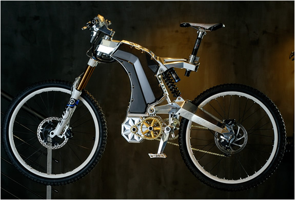 THE BEAST | M55 ELECTRIC BIKE | Image