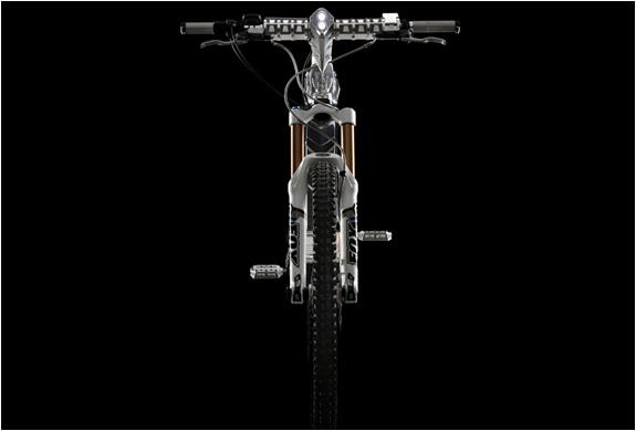 img_the_beast_m55_electric_bike_5.jpg