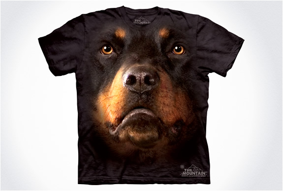 img_the_mountain_dog_t_shirts_4.jpg | Image
