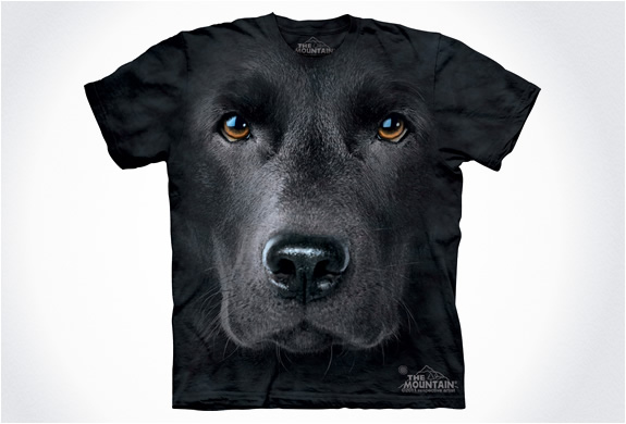 img_the_mountain_dog_t_shirts_5.jpg | Image