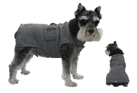 WALL STREET DOG TRENCH COAT | Image