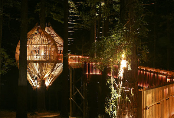 YELLOW TREE HOUSE RESTAURANT | Image