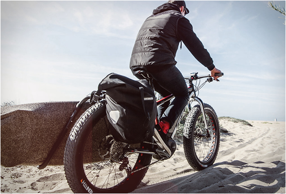 lebowske-electric-fat-bike-2.jpg | Image