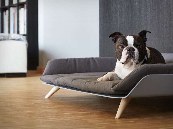 letto-dog-bed-2.jpg | Image