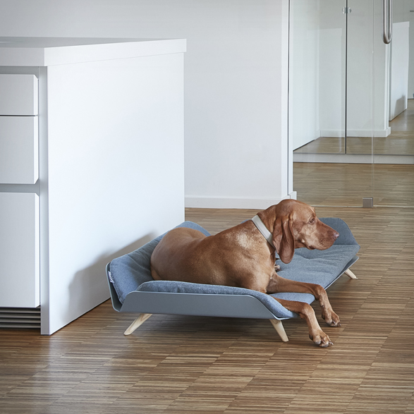 letto-dog-bed-4.jpg | Image