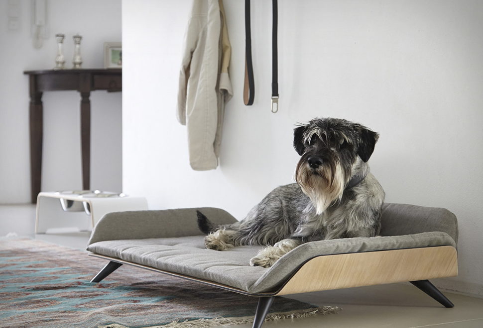 LETTO DOG BED | Image