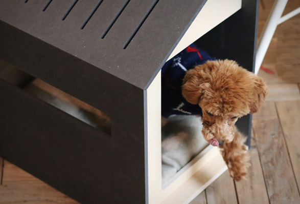 minimalist-dog-houses-7.jpg