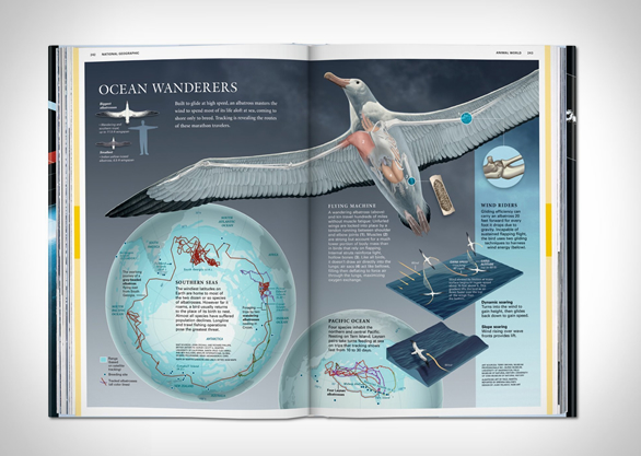 national-geographic-infographics-6.jpg