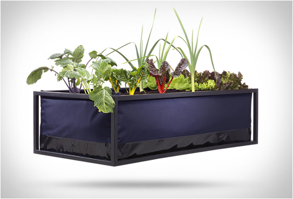NOOCITY GROWBED | Image