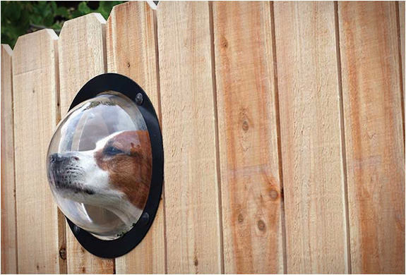 PETPEEK | WINDOW FOR YOUR FENCE | Image