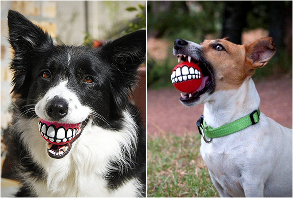 ROGZ GRINZ | FUNNY SMILE DOG TOY | Image