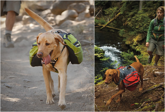 DOG PACKS | BY RUFFWEAR | Image