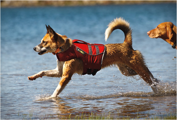 ruffwear-k-9-float-coat-2.jpg | Image