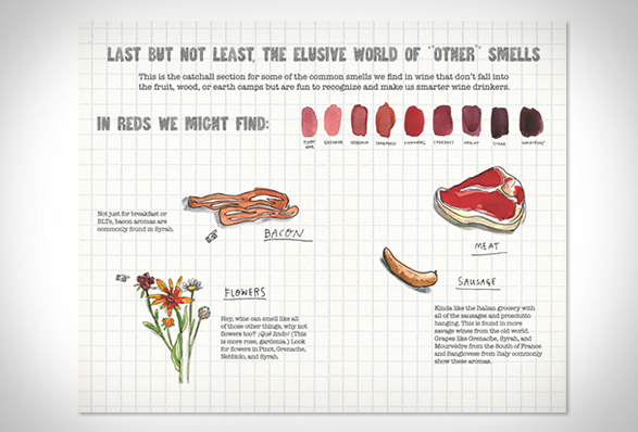 scratch-sniff-wine-guide-3.jpg | Image