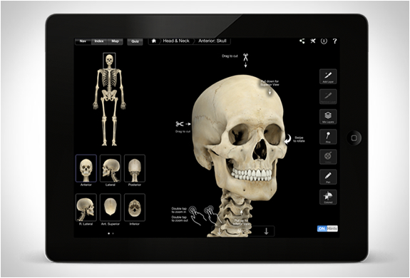 skeleton-system-pro-3-2.jpg | Image