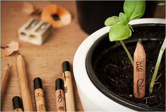 SPROUT | A PENCIL THAT GROWS | Image