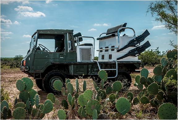 texas-quail-rigs-2.jpg | Image