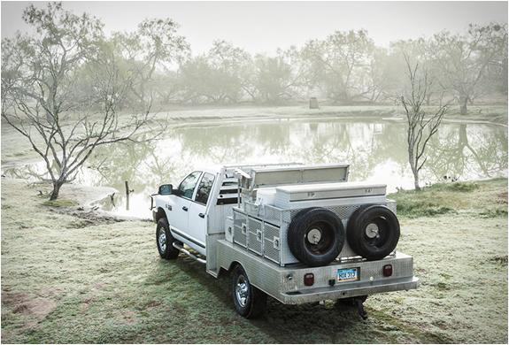 texas-quail-rigs-5.jpg | Image
