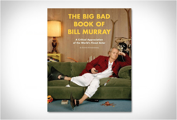 THE BIG BAD BOOK OF BILL MURRAY | Image